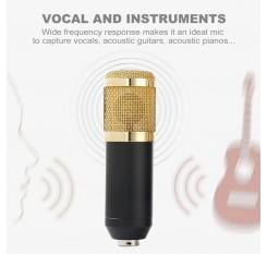 BM800 Condenser Microphone Kit Pro Audio Studio Recording & Brocasting Adjustable Mic Suspension Scissor Arm Pop Filter